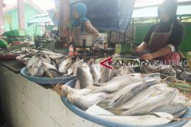 Pasokan ikan laut di Seruyan semakin berkurang