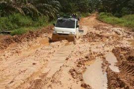 Jalan pelosok Kotim rusak, perusahaan diminta peduli