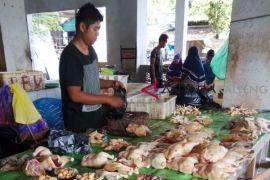 Harga ayam potong di Bartim mendadak naik jadi Rp50.000 per ekor
