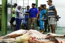 Kotawaringin Barat operasikan RPH modern penuhi kebutuhan daging sapi