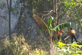 Kebakaran lahan terjadi dua lokasi di Sampit