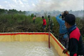 Kebakaran lahan di Kotim mulai marak