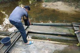 Seorang pria ditemukan meninggal diduga akibat akar beracun