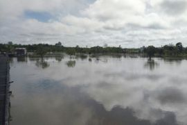 Petani di Barut terima asuransi Rp880 juta
