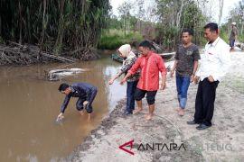 Polres Kotim akan penjarakan pelaku pencemaran sungai