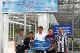 Petani dapat bantuan rumah pembibitan dari BI Kalteng