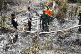 Kebakaran lahan di Lamandau berhasil dipadamkan Tim Gabungan