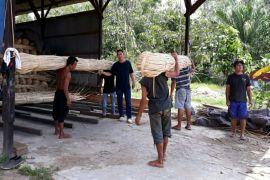 Pengusaha dan petani rotan kecewa pemerintah tidak peduli