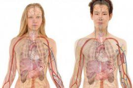 Begini fakta unik tentang tubuh manusia