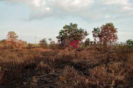 Palangka Raya kembali marak kebakaran lahan