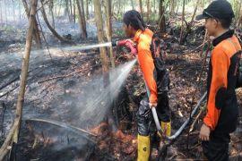 Waspada! Asap kebakaran lahan mulai ganggu kesehatan warga