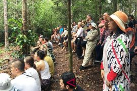 Ratusan Yachter dari 41 Negara terkesima lihat orangutandi Kobar