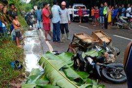 Pedagang sayur di Muara Teweh tewas menabrak pohon roboh