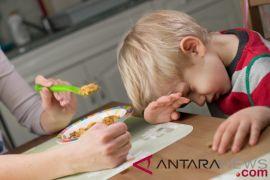 Bagaimana cara kenalkan makanan sehat pada anak?