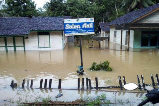 Banjir Masih Rendam Sejumlah Desa di Sungai Teweh