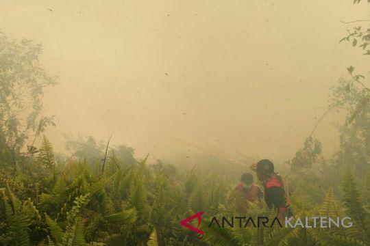 Diduga sengaja dibakar untuk perumahan, Polres Kotim selidiki kebakaran lahan