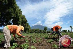 2017 Polres Lingga berinovasi dibidang pertanian