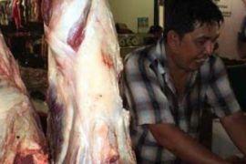 Harga Daging Sapi di Tanjungpinang Masih Rp80 Ribu/Kg