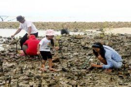 Pemerintah kembangkan kepariwisataan Pulau Putri