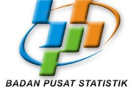 BPS: Wisman ke Kepri naik 3,92 persen