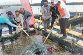 Pertamina gandeng Flipmas bina KEM Madong