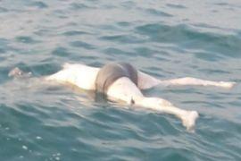 Mayat tanpa kepala mengapung di laut Mapur