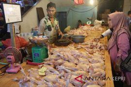 Harga daging Tanjungpinang stabil jelang Idul Adha