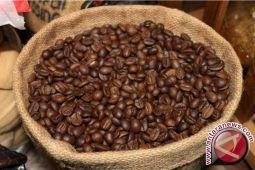 Produksi kopi bantu kurangi kemiskinan di Panama