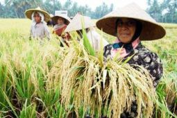 Pemprov Lampung Bentuk Protani