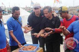 Lampung Timur, eksportir utama rajungan