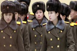 China tutup musik