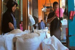 Pedagang: harga beras cenderung turun