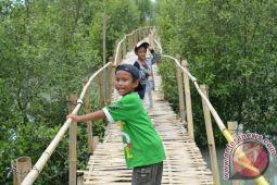 Wisata Hutan Mangrove Lampung Timur Serap Banyak Tenaga Kerja