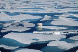 Studi : Es Laut Arktik Menipis Lebih Cepat