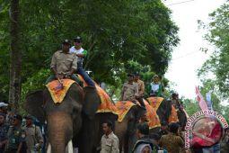 Pembukaan FWK 2017 Dimeriahkan Parade Gajah