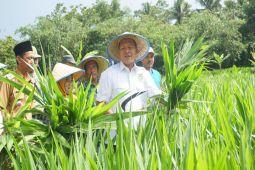 Lampung Tengah Ditargetkan Jadi Lumbung Ternak Sumatera