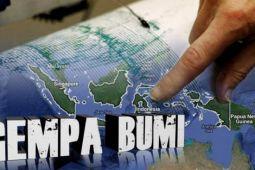 BMKG catat 244 gempa di Lombok
