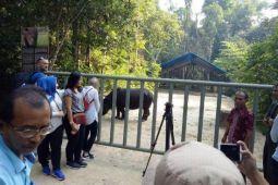 Jurnalis Kroasia kunjungi Way Kambas Lampung