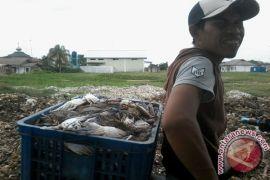 Ekspor Lampung pada September naik 12,95 persen