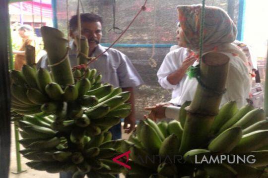 Tren ekspor produk pertanian Lampung meningkat