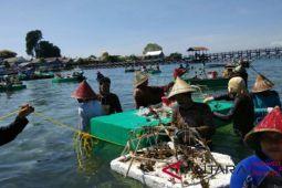 MARS rehabilitasi terumbu karang Pulau Bontosua