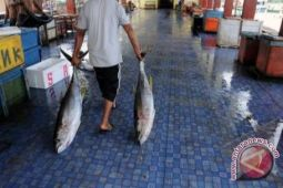 DKP Sangihe bangun tempat pelelangan ikan