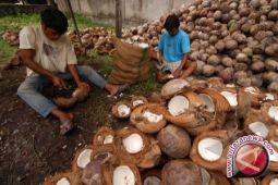 North Sulawesi`s Coconut Flour Exported Mainly To Italy: Official