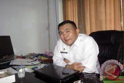Manado Buat Taman-taman Vertikal Percantik Kota
