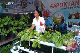 DPKP  Gelar Pameran Pertanian Meriahkan Manado Fiesta