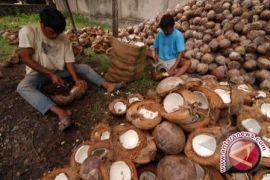 Permintaan tepung kelapa Sulut dari Rusia tinggi