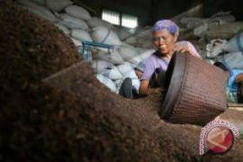 Harga cengkih Sulut Rp95.000/kg