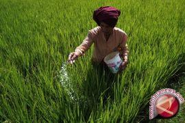 Upaya tingkatkan kesejahteraan petani Sulut