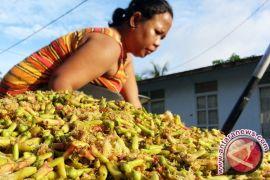 Petani berharap harga cengkih di atas rp100.000