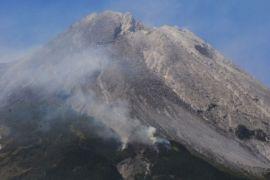 Lereng Gunung Merapi yang terbakar